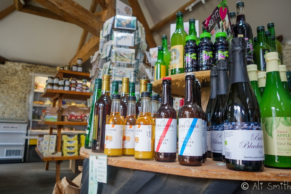 Review of Modbury Farm Shop in Burton Radstock