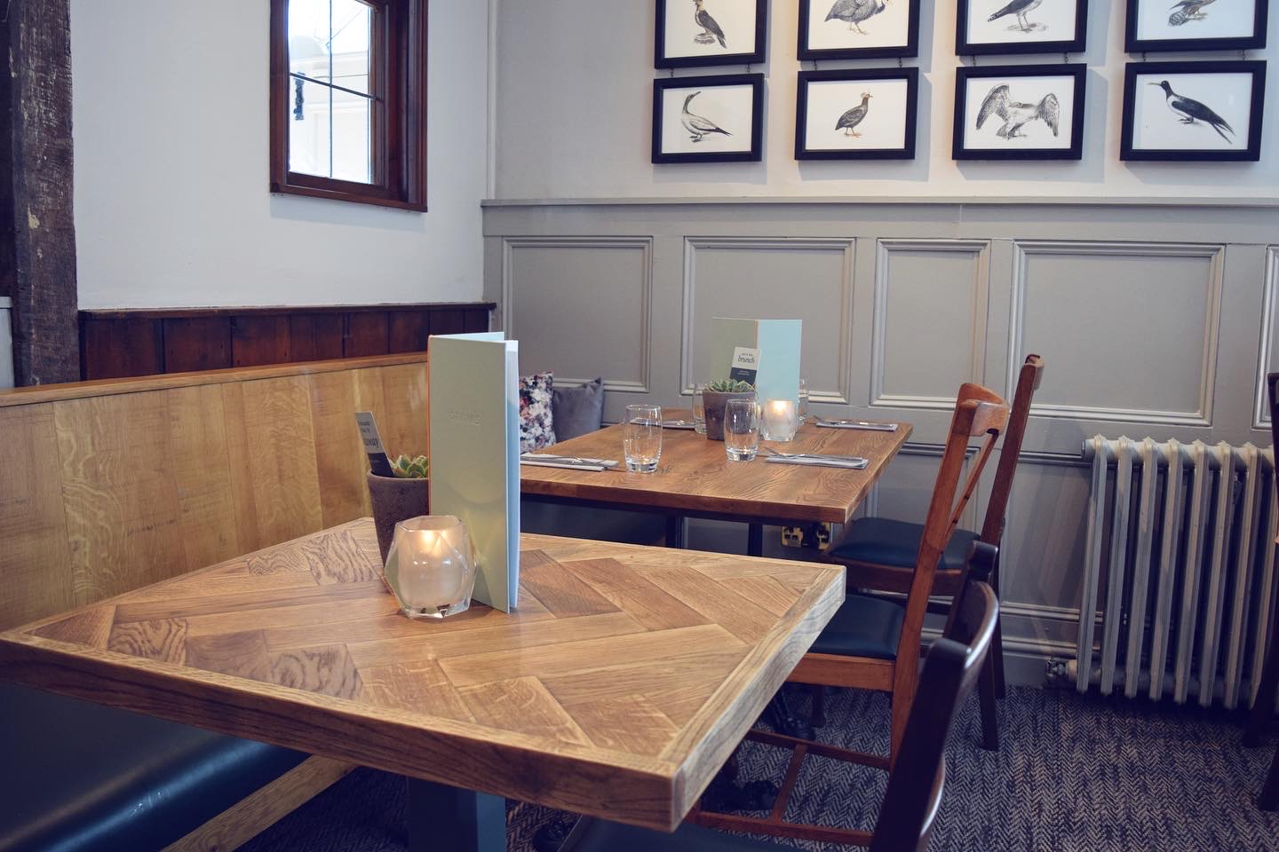Review of The Curlew in Parley